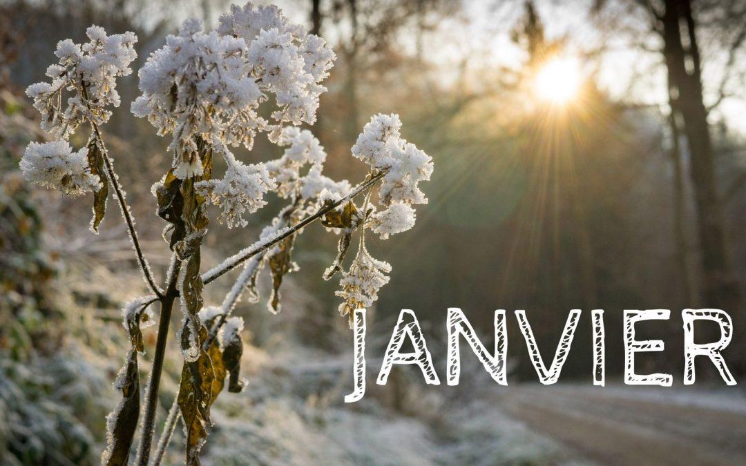 Programme de Janvier 2020